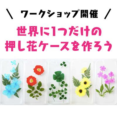ワークショップ開催。世界に1つだけの押し花ケースを作ろう。