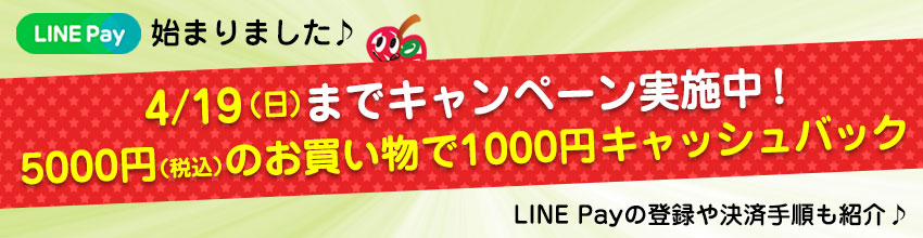 LINE Pay 登録・決済手順 ~LINE Payでお買い物♪~