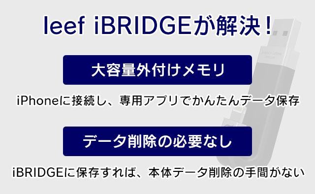 leef iBRIDGEが解決!