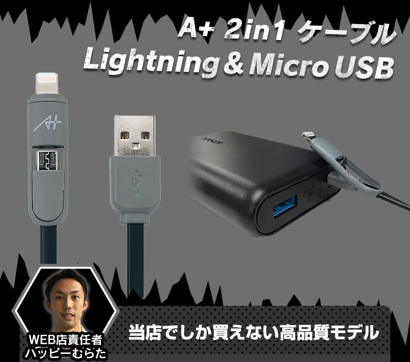 A+ 2in1ケーブル Lightning&Micro USB