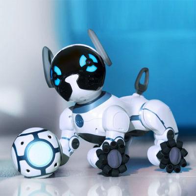 ペットが飼えない人に。癒やしを与えてれるロボット犬「CHiP」