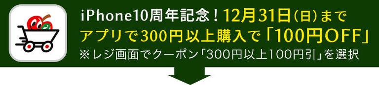 12月31日までアプリでお買い物をすると100円引き