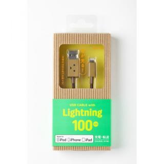 [1m]ダンボー Lightningケーブル DANBOARD_2