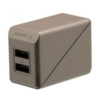 コンパクトなAC充電器でかしこく充電 スマートIC搭載 急速充電 3A出力対応 AC充電器 ゴールド
