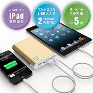 cheero Power Plus 2 モバイルバッテリー 10400mAh (ゴールド)
