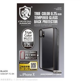 【iPhone X】True Color バックプロテクター ブラック iPhone X