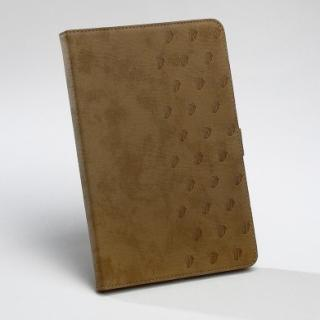 iPad mini/2/3対応 Rolling StonesCloud Diary ブラウン