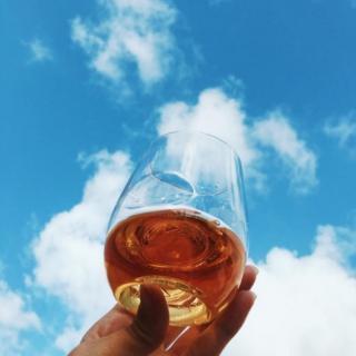 GOVINO シャンパン用フルートグラス 2個セット_4