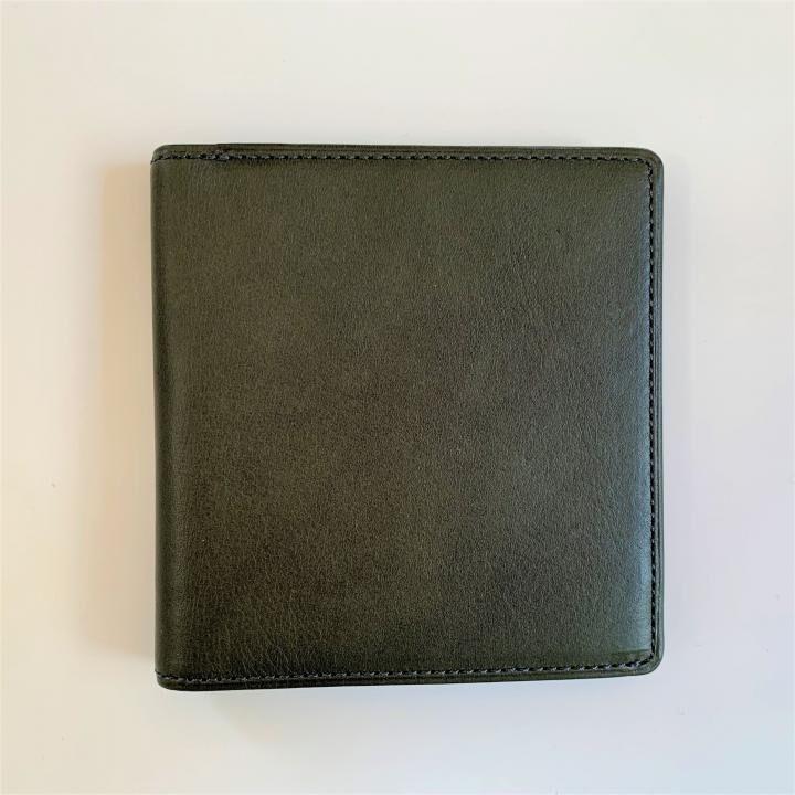 カードがたくさん入るのに薄い手の平財布 BS02 グリーン_0