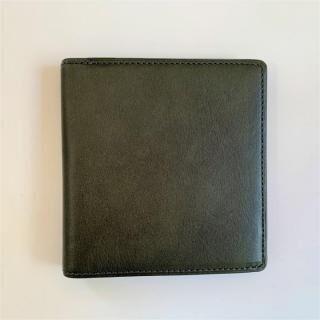カードがたくさん入るのに薄い手の平財布 BS02 グリーン