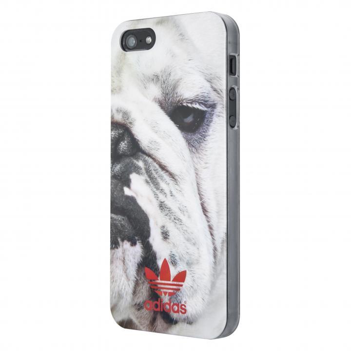 adidas Originals ハードケース Bulldog iPhone SE/5s/5