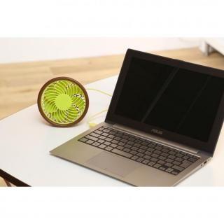 USBファン iFan Fruit ドラゴンフルーツ_1