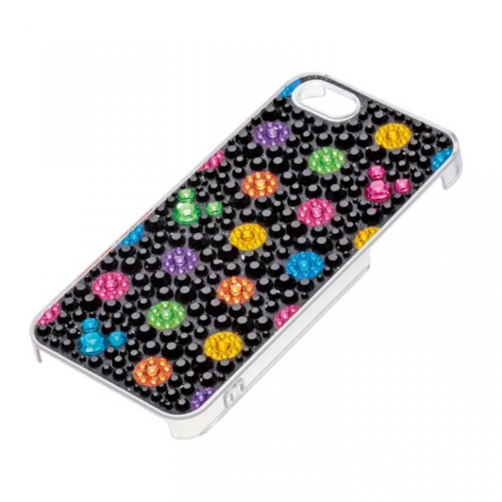 iPhone SE/5s/5 ケース ジュエリーケース ディズニー ブラック iPhone SE/5s/5ケース_0