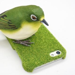 【iPhone SE/5s/5】 Shibaful(シバフル) Yoyogi Park 芝生のケース