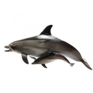 生態科学図鑑/海洋生物 vol.1 イルカ_2