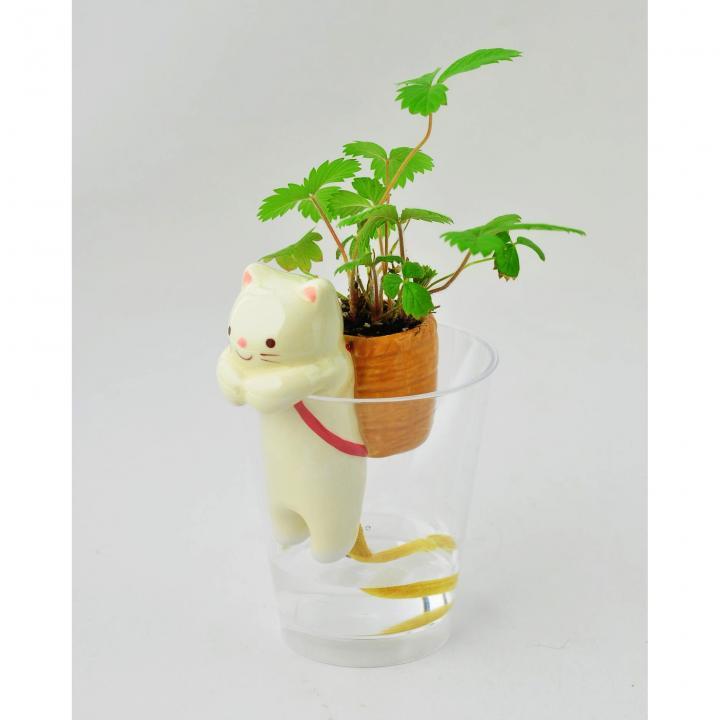 デスクで楽しめる 栽培セット しっぽん ネコ (ワイルドストロベリー)_0