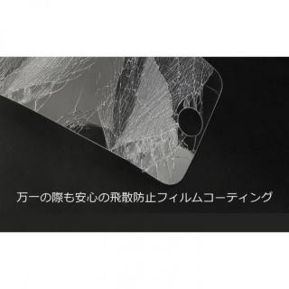 【iPhone SE/5s/5フィルム】[0.33mm]簡単に貼れる 強化ガラス LEOPARD GLASS ウルトラクリア iPhone SE/5s/5_7