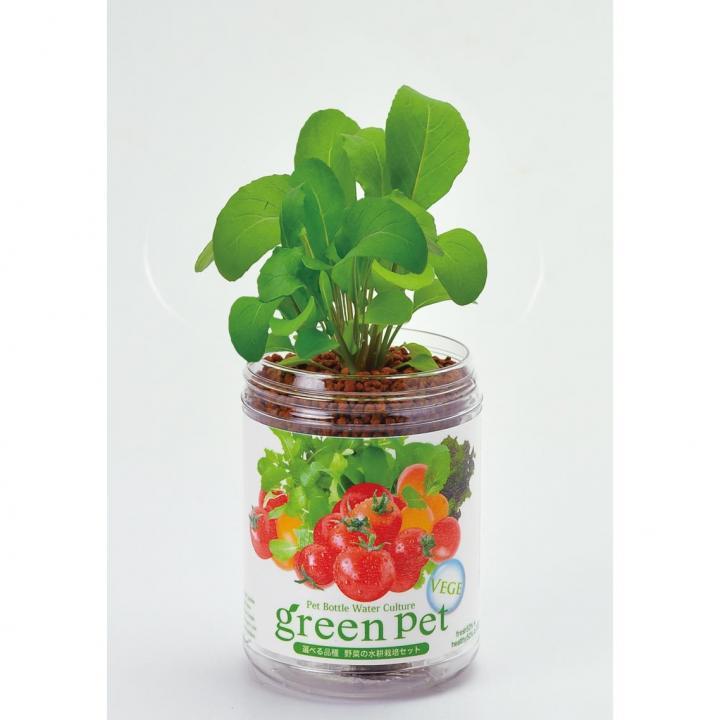 ペットボトルで手軽 育てるグリーンペットベジ ルッコラ_0