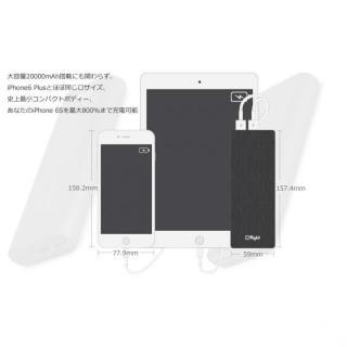 [20100mAh]Xlight モバイルバッテリー XE-T200-D メタルブラック_2