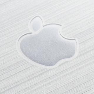 【iPhone SE/5s/5フィルム】クリスタルアーマー 強化ガラス バックプロテクター  メタル調シルバー iPhone SE/5s/5_2
