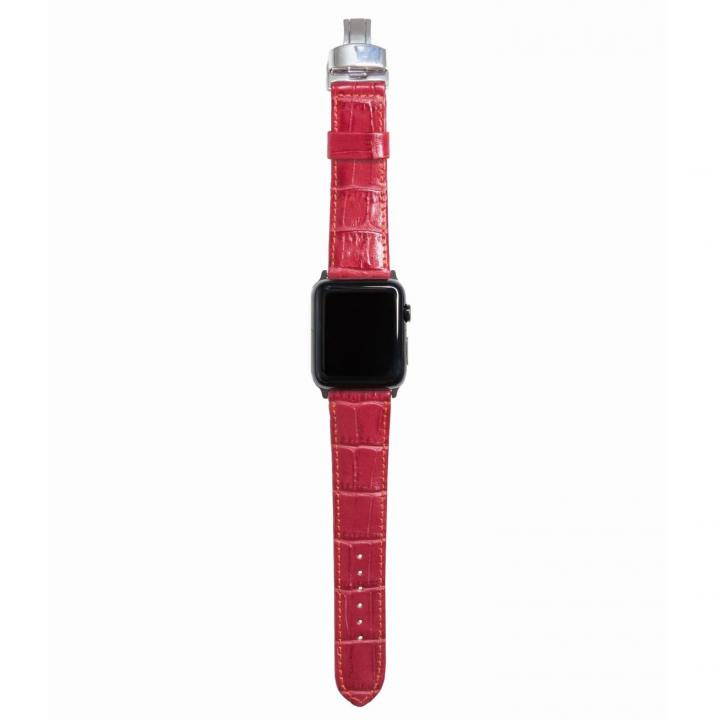 AppleWatch Strap 38mm REGINA シルバーパーツ_0