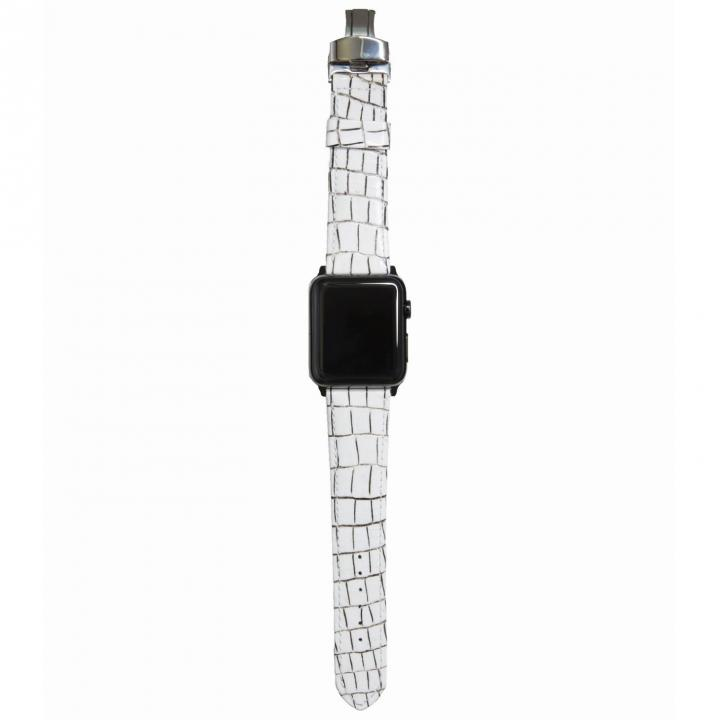 AppleWatch Strap 42mm LASTRICARE シルバーパーツ_0