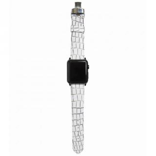 AppleWatch Strap 42mm LASTRICARE シルバーパーツ