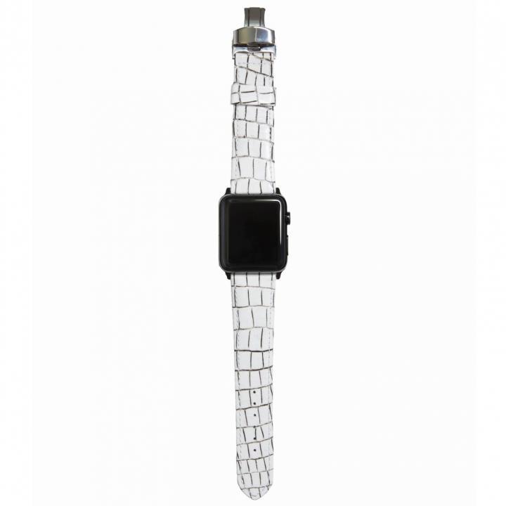 AppleWatch Strap 42mm LASTRICARE ブラックパーツ_0