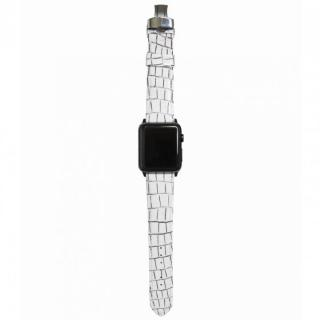 AppleWatch Strap 42mm LASTRICARE ブラックパーツ