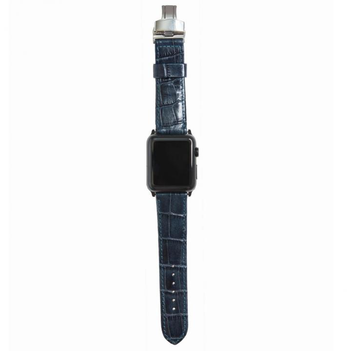 AppleWatch Strap 42mm RE シルバーパーツ_0