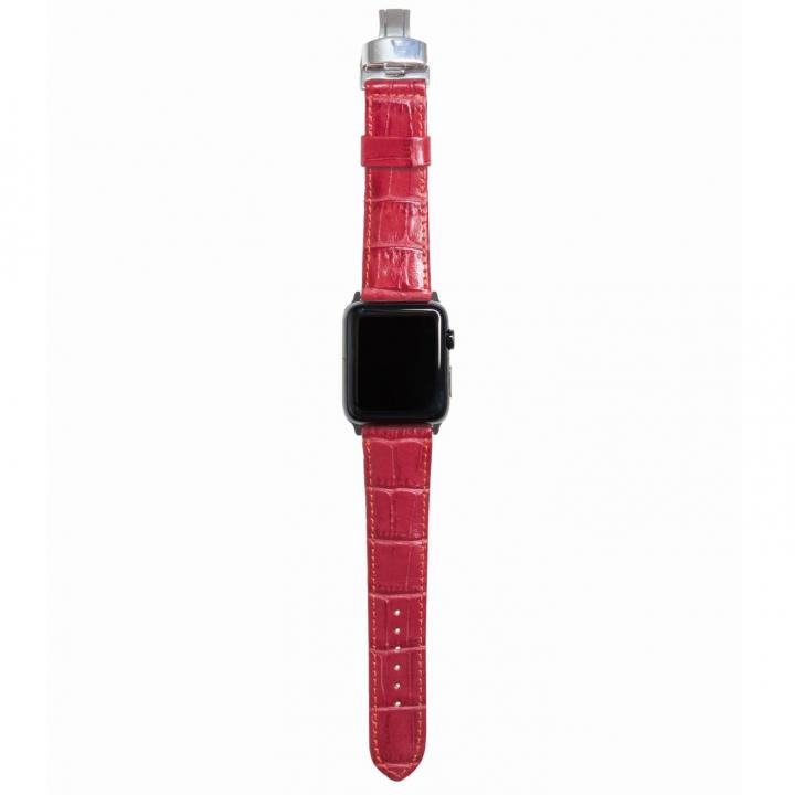 AppleWatch Strap 42mm REGINA シルバーパーツ_0
