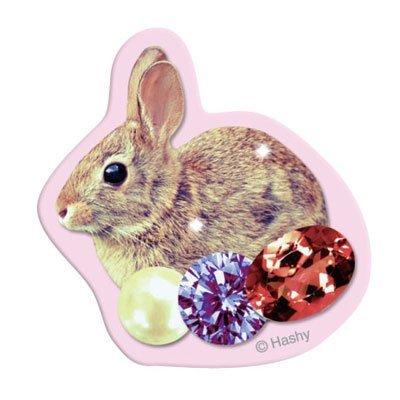 キレイステッカー(ウサギ)_0