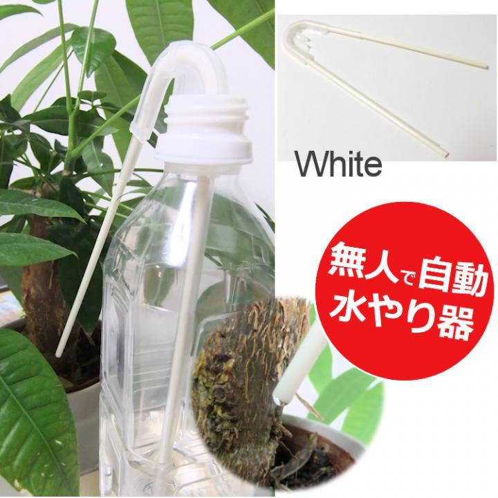 自動水やり サイフォン式 水の番人 ホワイト_0