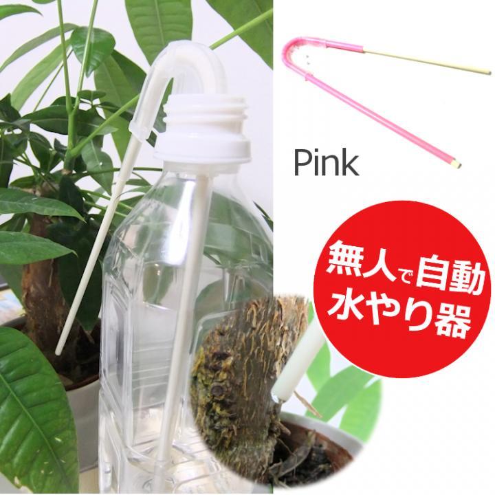 自動水やり サイフォン式 水の番人 ピンク_0