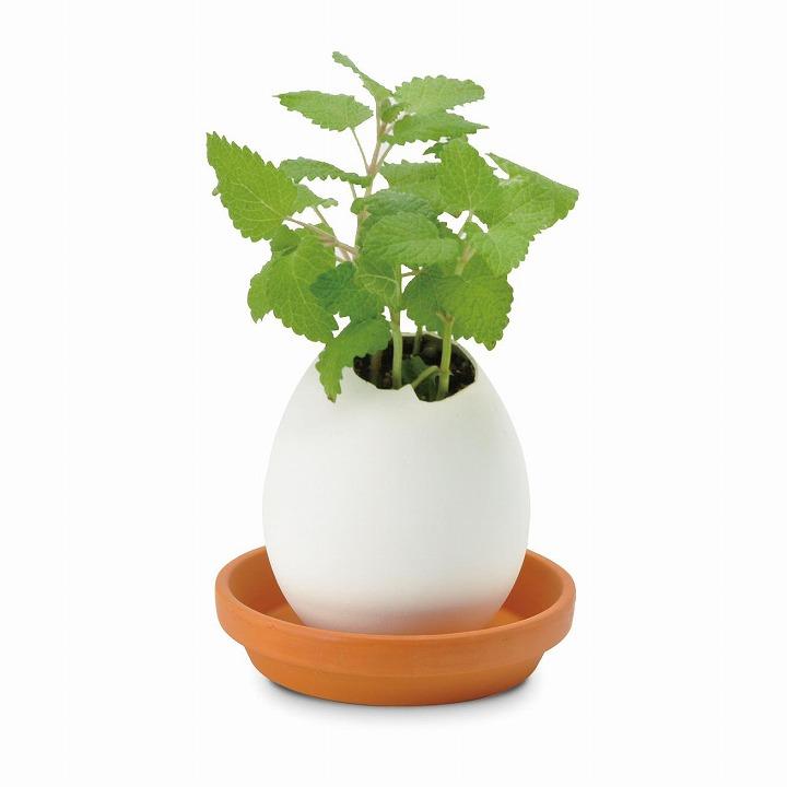 割って育てる卵型の栽培セット エッグリング ハーブ レモンバーム_0