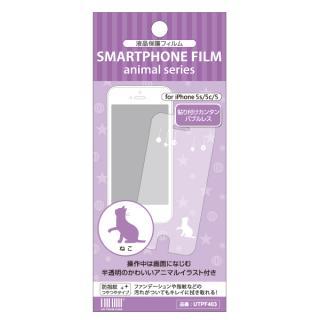 超かわいいイラスト付き 液晶保護フィルム ねこ iPhone SE/5s/5c/5