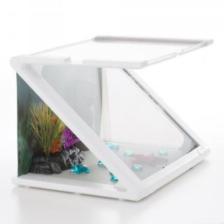 スマート・トイ - ルクシィ・熱帯魚の水槽(Smart Toy Looksi Aquarium)