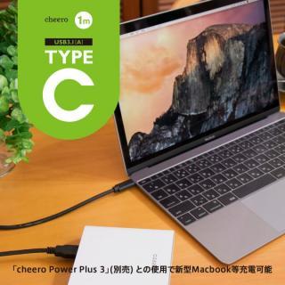 [1m]cheero TypeC USB 3.1ケーブル 100cm TypeC-A_4