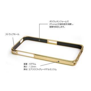 【iPhone SE/5s/5ケース】Alloy X  iPhone SE/5s/5 - Champagne Gold_2