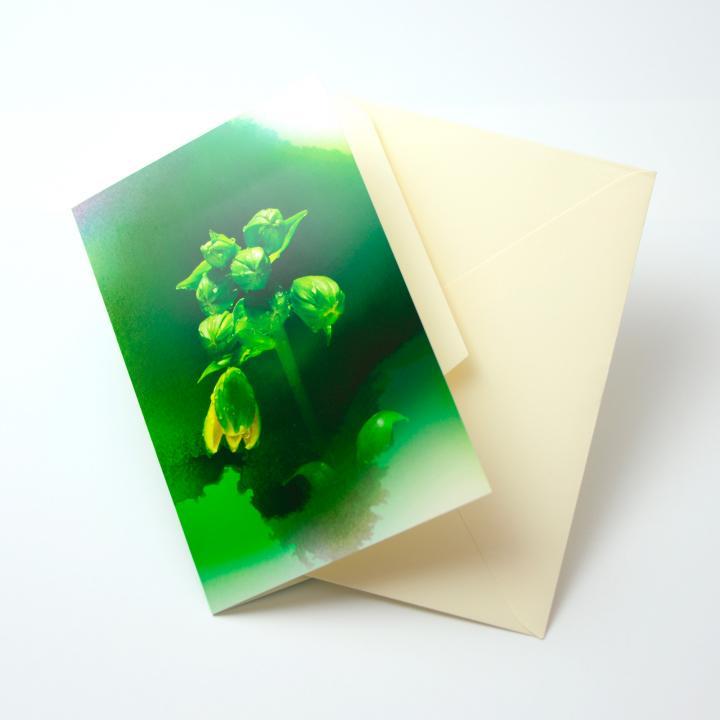 iPhoneで動き出すグリーティングカード Bloom Card 03(竹島百合)_0