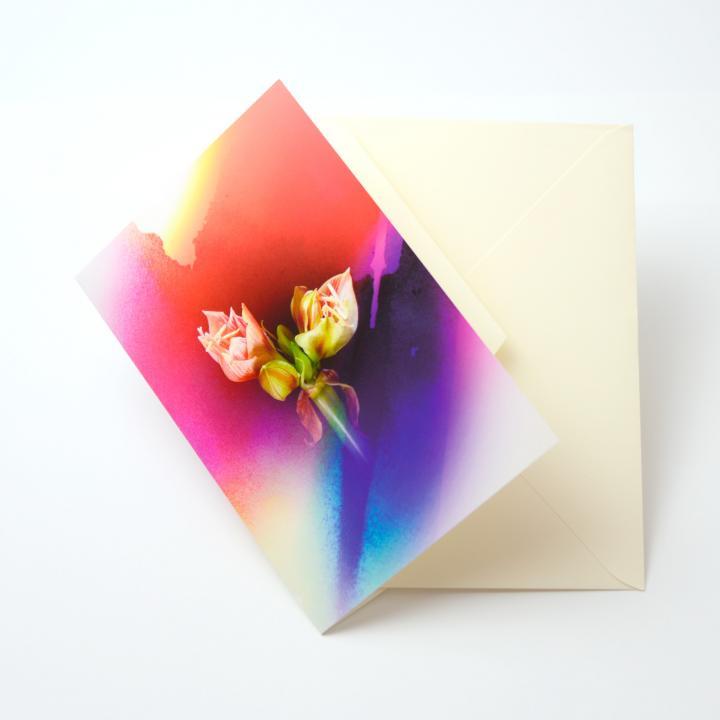iPhoneで動き出すグリーティングカード Bloom Card 05(アマリリス)_0