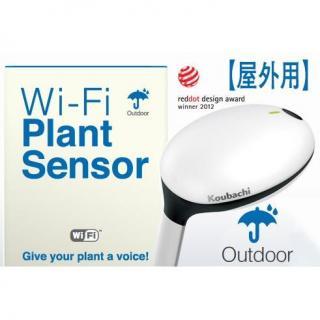 Wi-Fiプラントセンサー「Koubachi」(屋外用)